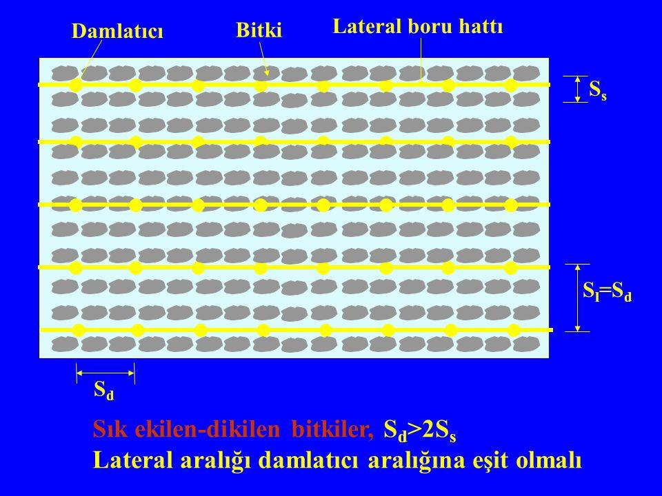 Sık ekilen-dikilen bitkiler, S d >2S s Lateral aralığı damlatıcı aralığına eşit olmalı Damlatıcı Bitki Lateral boru hattı SdSd S l =S d SsSs