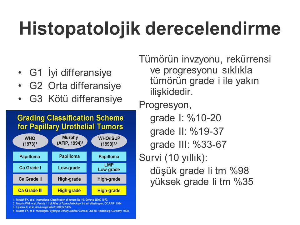 Histopatolojik derecelendirme G1İyi differansiye G2Orta differansiye G3Kötü differansiye Tümörün invzyonu, rekürrensi ve progresyonu sıklıkla tümörün grade i ile yakın ilişkidedir.