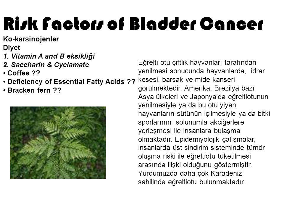 Lenf nodları% 55  Karaciğer% 38  Akciğer% 36  Kemik% 28 Mesane Tümöründe Metastaz