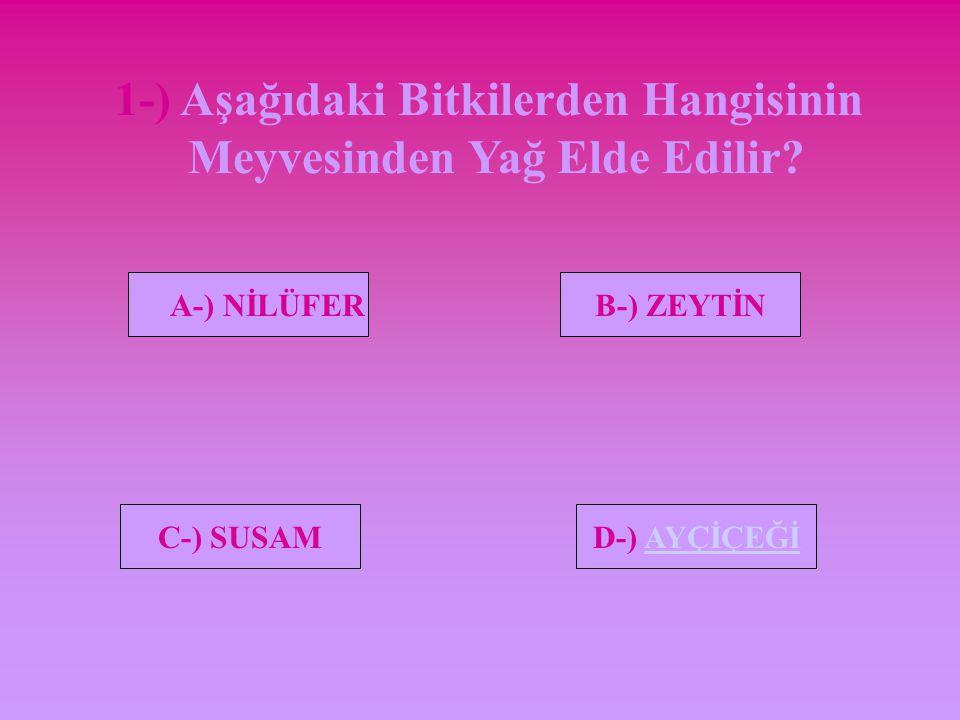 DEĞERLENDİRME SORU 1 SORU 2 SORU 3