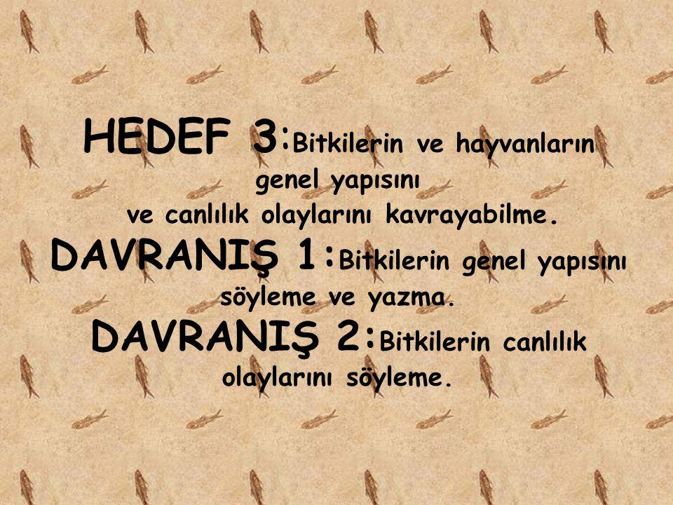 HEDEF 2: Canlıların sınıflandırma şekilleri bilgisi DAVRANIŞ 1: Canlıları gruplara ayırma.