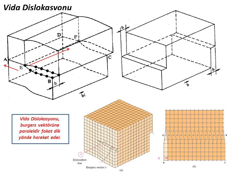 Vida Dislokasyonu Vida Dislokasyonu, burgers vektörüne paraleldir fakat dik yönde hareket eder.