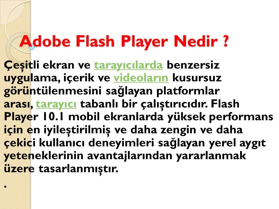 AdobeFlashPlayer İ nternet üzerinde anim asyonları, reklamları, flash videoları görüntülemenizi sa ğ layan bir tarayıcı eklentisidir.