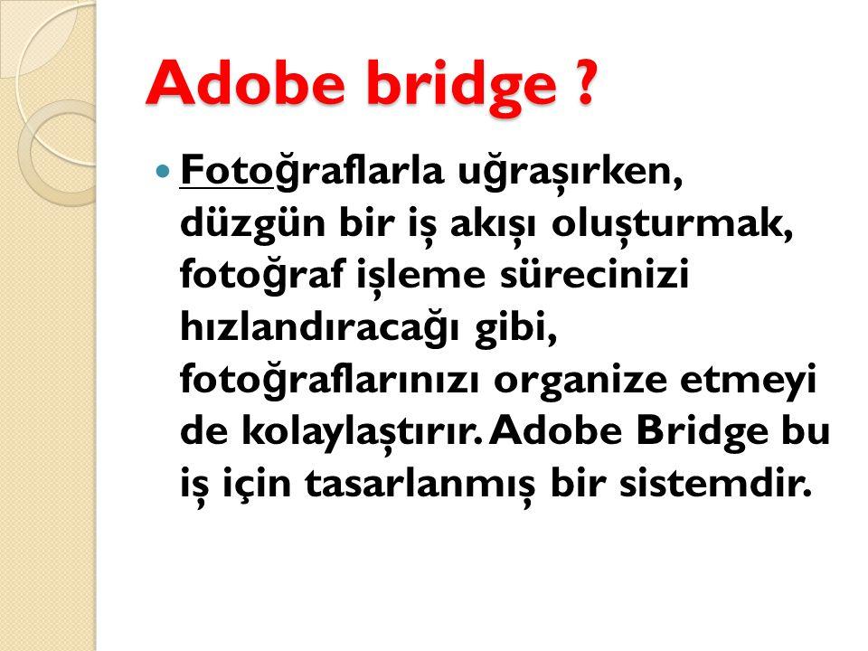 Adobe bridge .