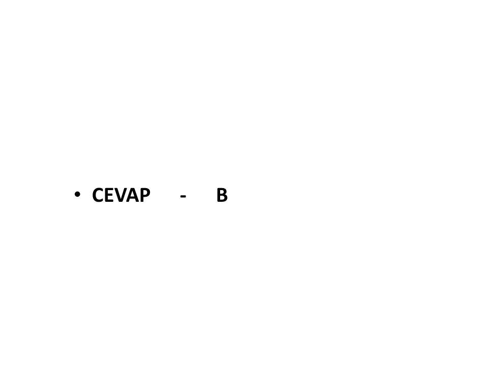 CEVAP - B