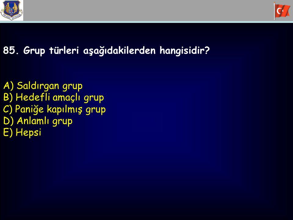 85. Grup türleri aşağıdakilerden hangisidir? A) Saldırgan grup B) Hedefli amaçlı grup C) Paniğe kapılmış grup D) Anlamlı grup E) Hepsi