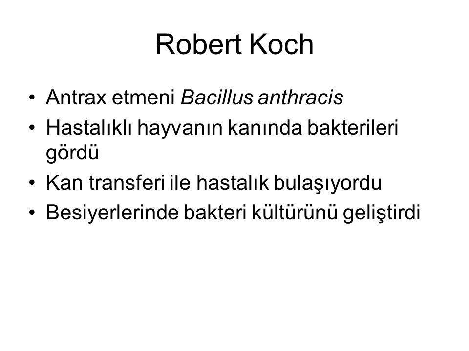 Robert Koch Antrax etmeni Bacillus anthracis Hastalıklı hayvanın kanında bakterileri gördü Kan transferi ile hastalık bulaşıyordu Besiyerlerinde bakteri kültürünü geliştirdi