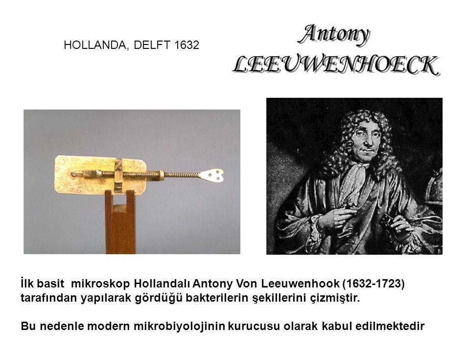 İlk basit mikroskop Hollandalı Antony Von Leeuwenhook (1632-1723) tarafından yapılarak gördüğü bakterilerin şekillerini çizmiştir.