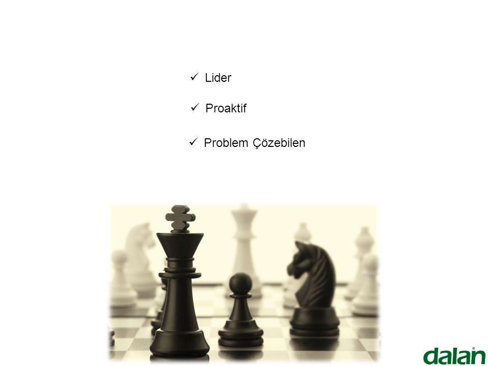 Lider Proaktif Problem Çözebilen
