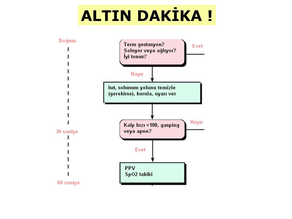 ALTIN DAKİKA !