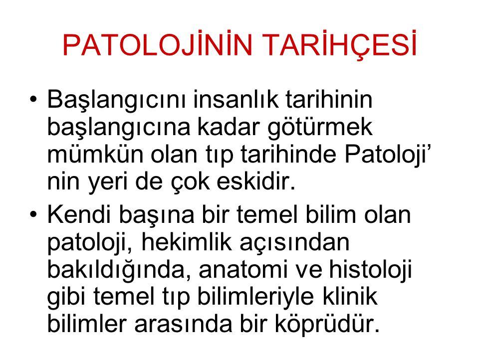 Prof.Dr. Besim TURHAN, Prof.