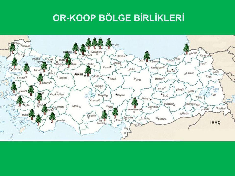 OR-KOOP BÖLGE BİRLİKLERİ