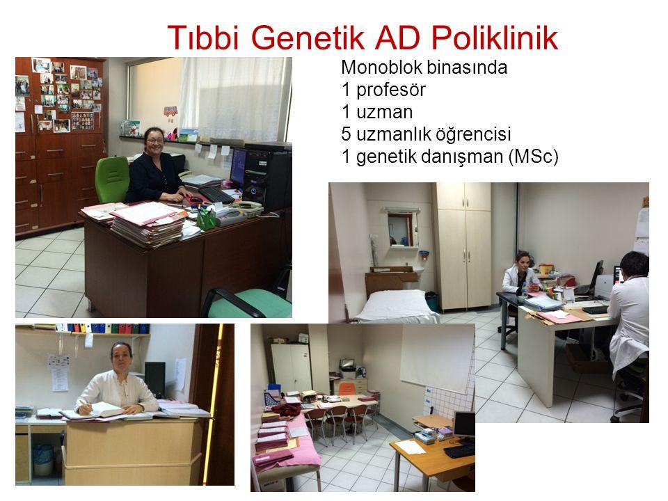 Tıbbi Genetik AD Poliklinik Monoblok binasında 1 profesör 1 uzman 5 uzmanlık öğrencisi 1 genetik danışman (MSc)