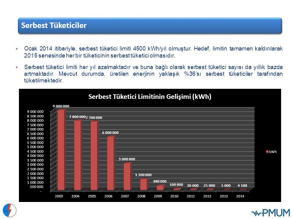 Ocak 2014 itibariyle, serbest tüketici limiti 4500 kWh/yıl olmuştur. Hedef, limitin tamamen kaldırılarak 2015 senesinde her bir tüketicinin serbest tü