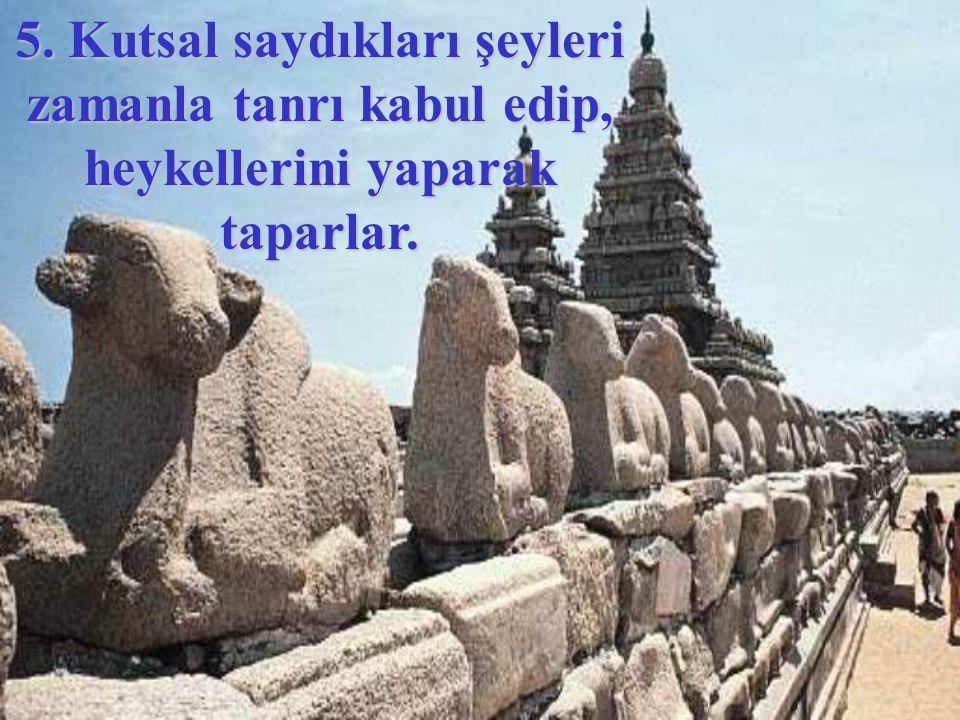 4. Kutsal gördükleri taş, ağaç, hayvan veya insan gibi varlıklarda bir güç olduğuna inanırlar.