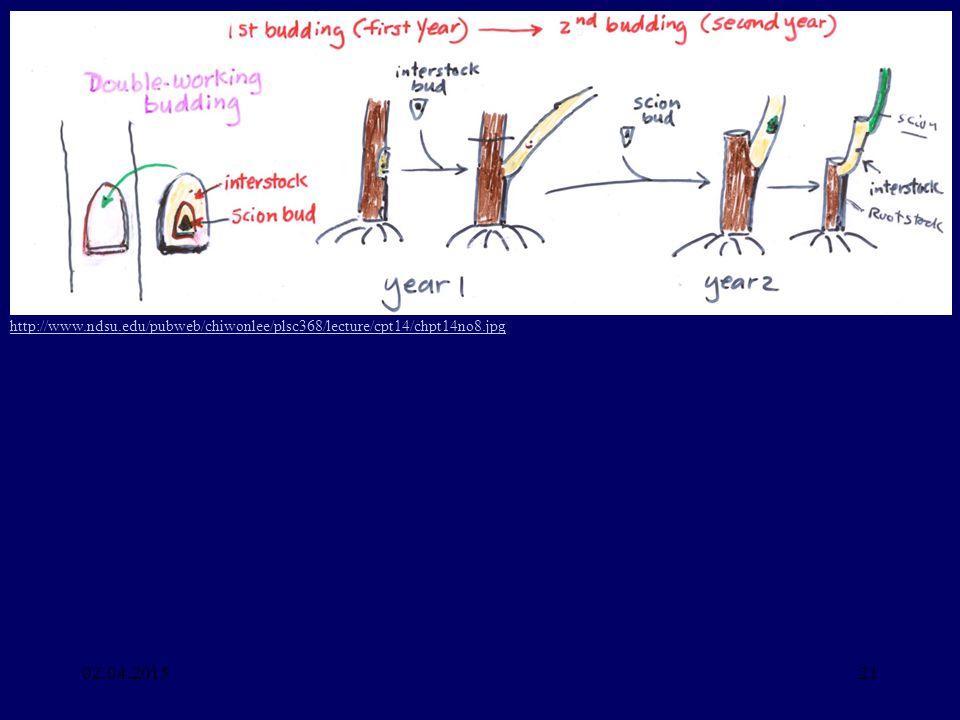 02.04.201521 http://www.ndsu.edu/pubweb/chiwonlee/plsc368/lecture/cpt14/chpt14no8.jpg