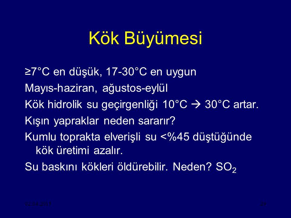 02.04.201529 Kök Büyümesi ≥7°C en düşük, 17-30°C en uygun Mayıs-haziran, ağustos-eylül Kök hidrolik su geçirgenliği 10°C  30°C artar.