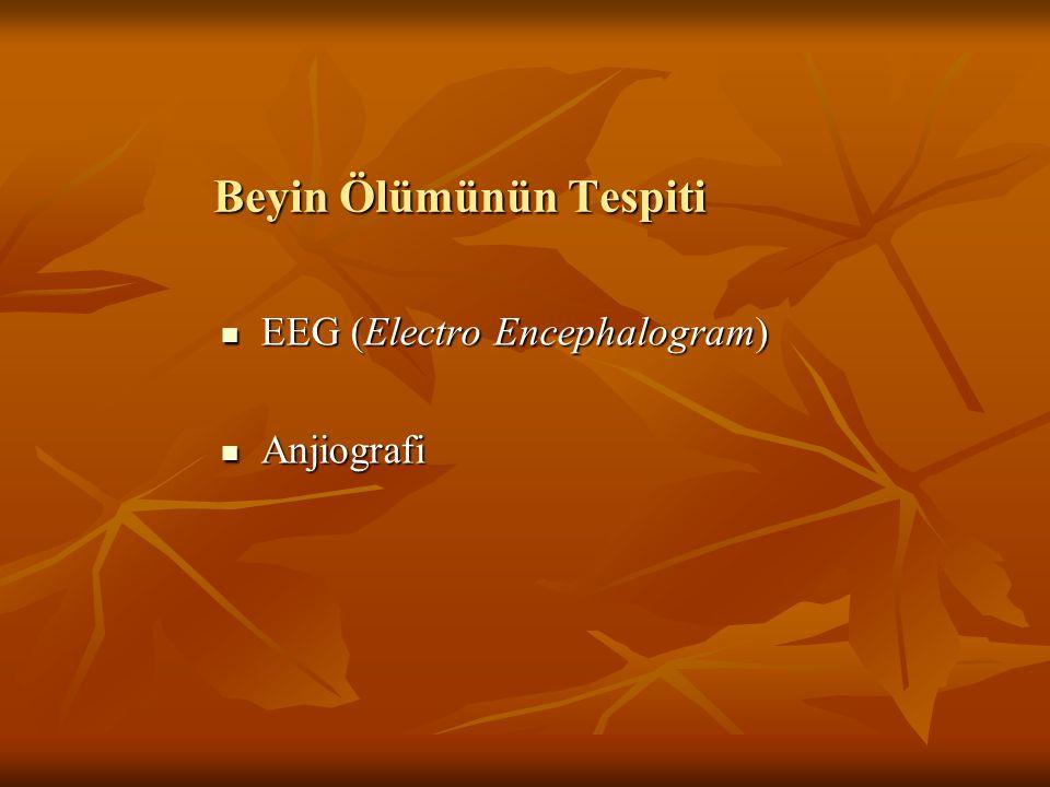 Beyin Ölümünün Tespiti EEG (Electro Encephalogram) EEG (Electro Encephalogram) Anjiografi Anjiografi