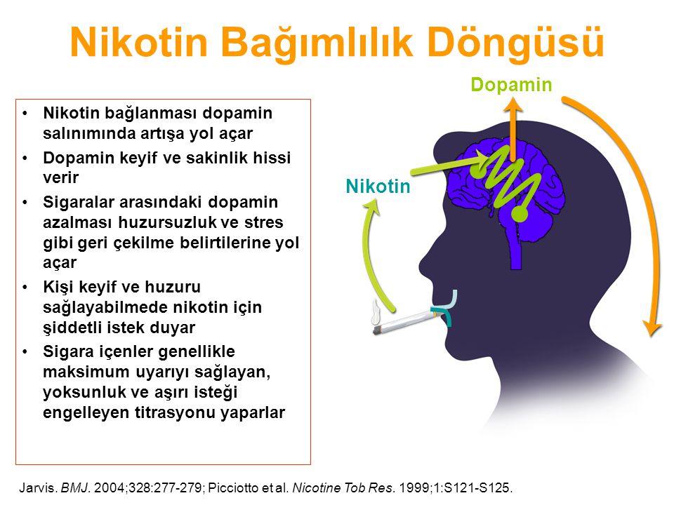 Nikotin Bağımlılık Döngüsü Nikotin bağlanması dopamin salınımında artışa yol açar Dopamin keyif ve sakinlik hissi verir Sigaralar arasındaki dopamin a