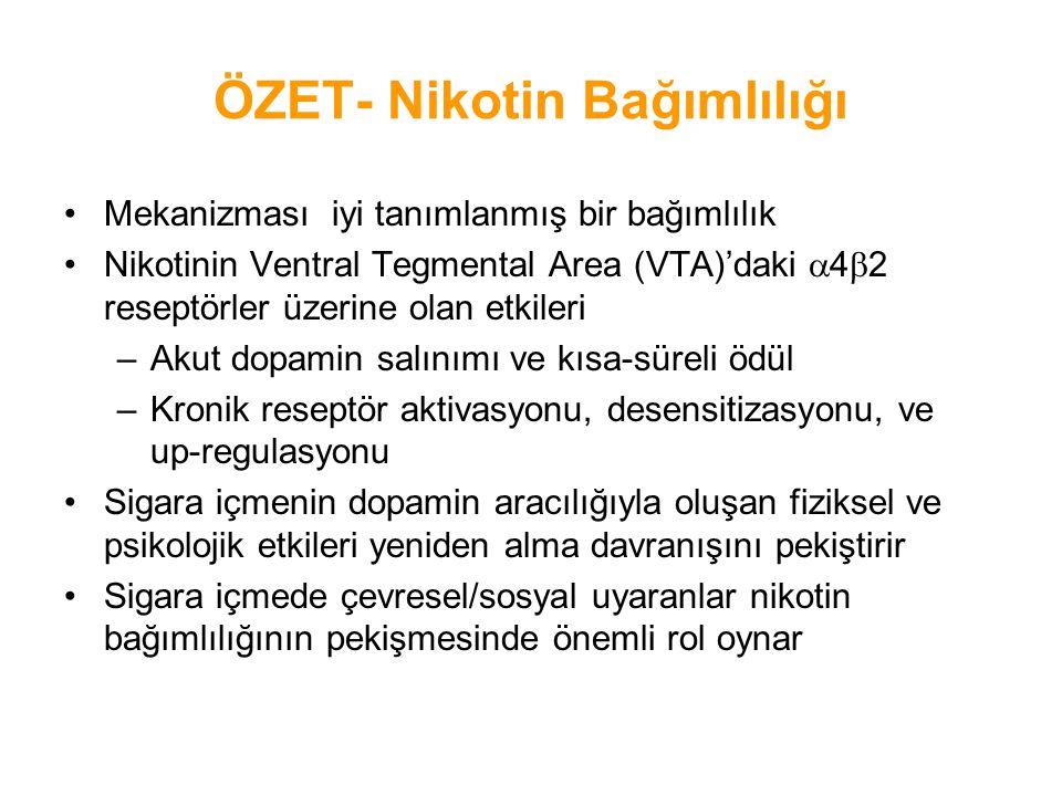 ÖZET- Nikotin Bağımlılığı Mekanizması iyi tanımlanmış bir bağımlılık Nikotinin Ventral Tegmental Area (VTA)'daki  4  2 reseptörler üzerine olan etki