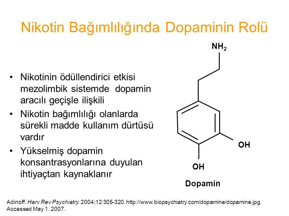 Nikotin Bağımlılığında Dopaminin Rolü Nikotinin ödüllendirici etkisi mezolimbik sistemde dopamin aracılı geçişle ilişkili Nikotin bağımlılığı olanlard