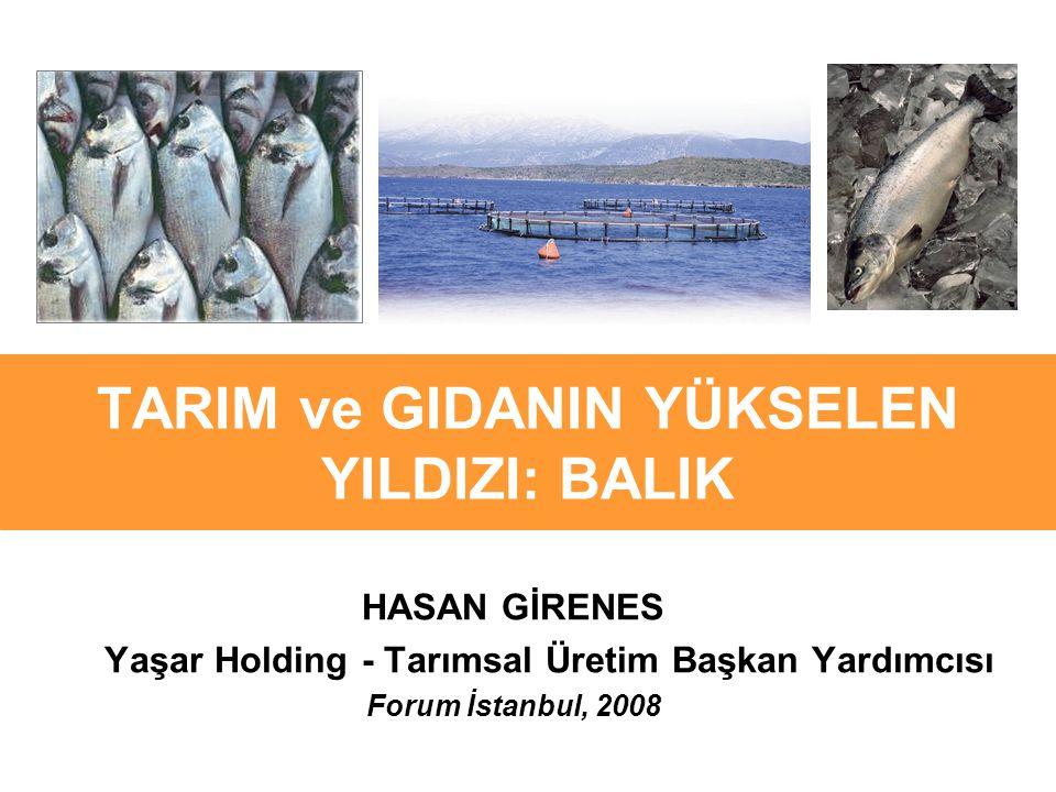 TARIM ve GIDANIN YÜKSELEN YILDIZI: BALIK HASAN GİRENES Yaşar Holding - Tarımsal Üretim Başkan Yardımcısı Forum İstanbul, 2008