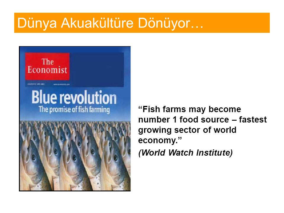 Dünya Akuakültüre Dönüyor… Fish farms may become number 1 food source – fastest growing sector of world economy. (World Watch Institute)
