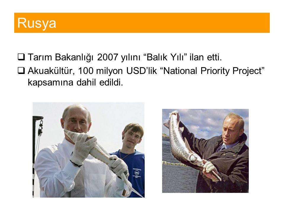 """Rusya  Tarım Bakanlığı 2007 yılını """"Balık Yılı"""" ilan etti.  Akuakültür, 100 milyon USD'lik """"National Priority Project"""" kapsamına dahil edildi."""