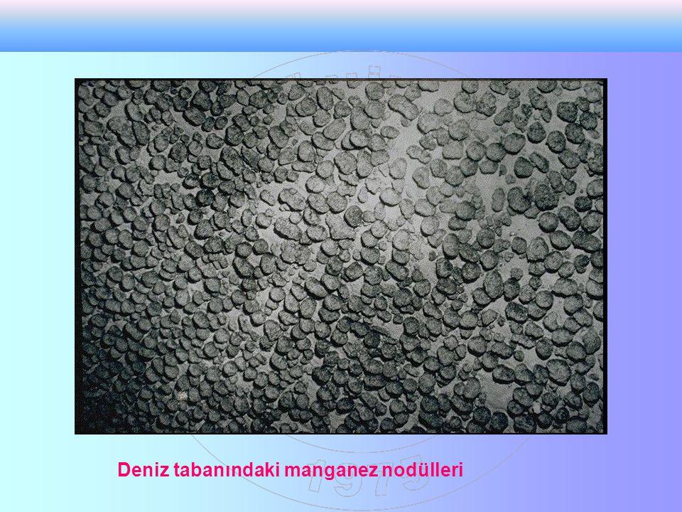 Deniz tabanındaki manganez nodülleri