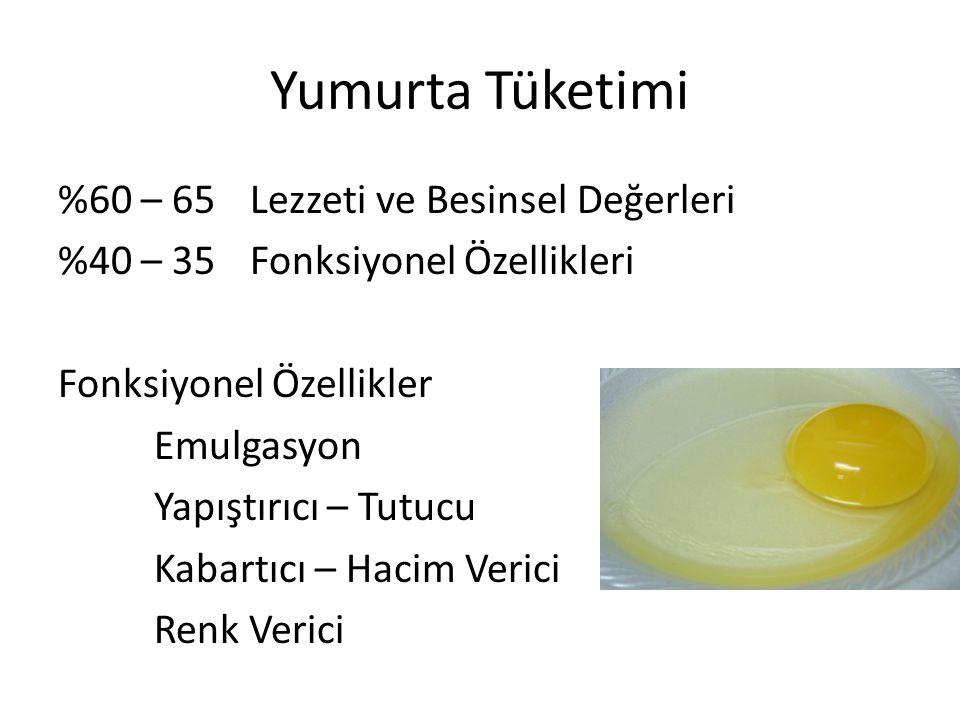 Yumurta Tüketimi %60 – 65Lezzeti ve Besinsel Değerleri %40 – 35Fonksiyonel Özellikleri Fonksiyonel Özellikler Emulgasyon Yapıştırıcı – Tutucu Kabartıc