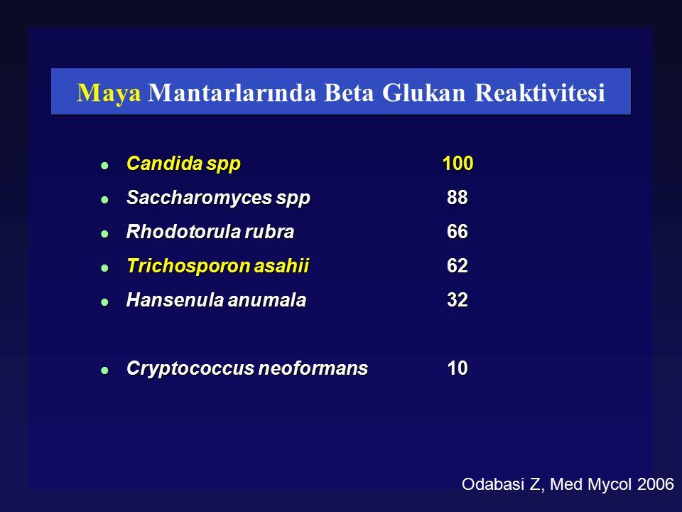 Maya Mantarlarında Beta Glukan Reaktivitesi l Candida spp l Saccharomyces spp l Rhodotorula rubra l Trichosporon asahii l Hansenula anumala l Cryptoco