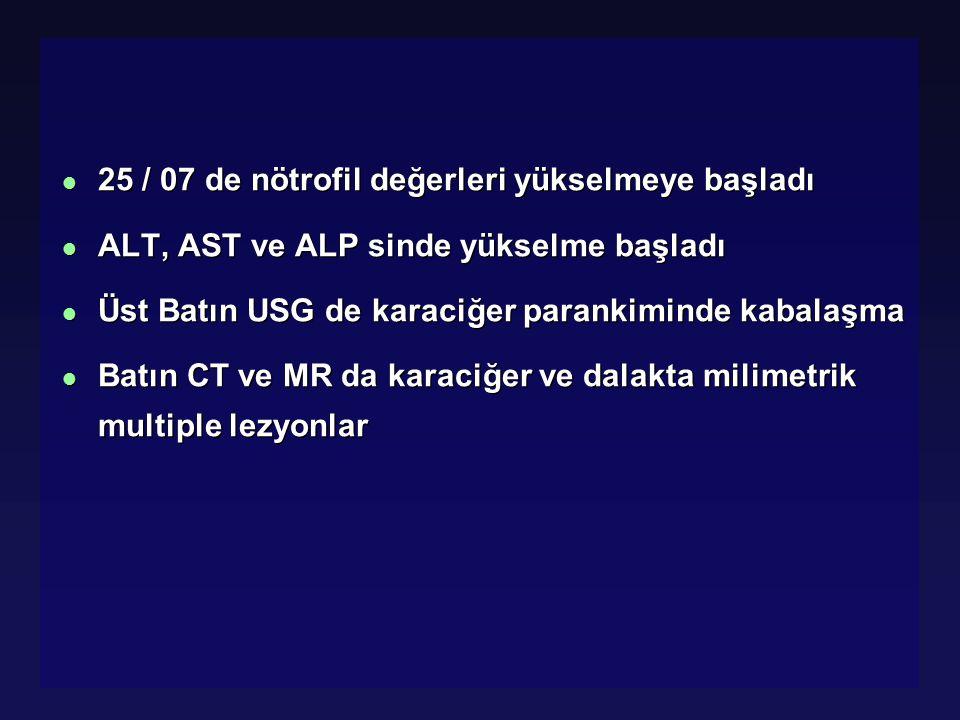 l 25 / 07 de nötrofil değerleri yükselmeye başladı l ALT, AST ve ALP sinde yükselme başladı l Üst Batın USG de karaciğer parankiminde kabalaşma l Batı