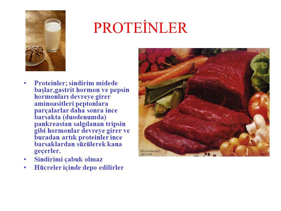 PROTEİNLER Proteinler; sindirim midede başlar,gastrit hormon ve pepsin hormonları devreye girer aminoasitleri peptonlara parçalarlar daha sonra ince b