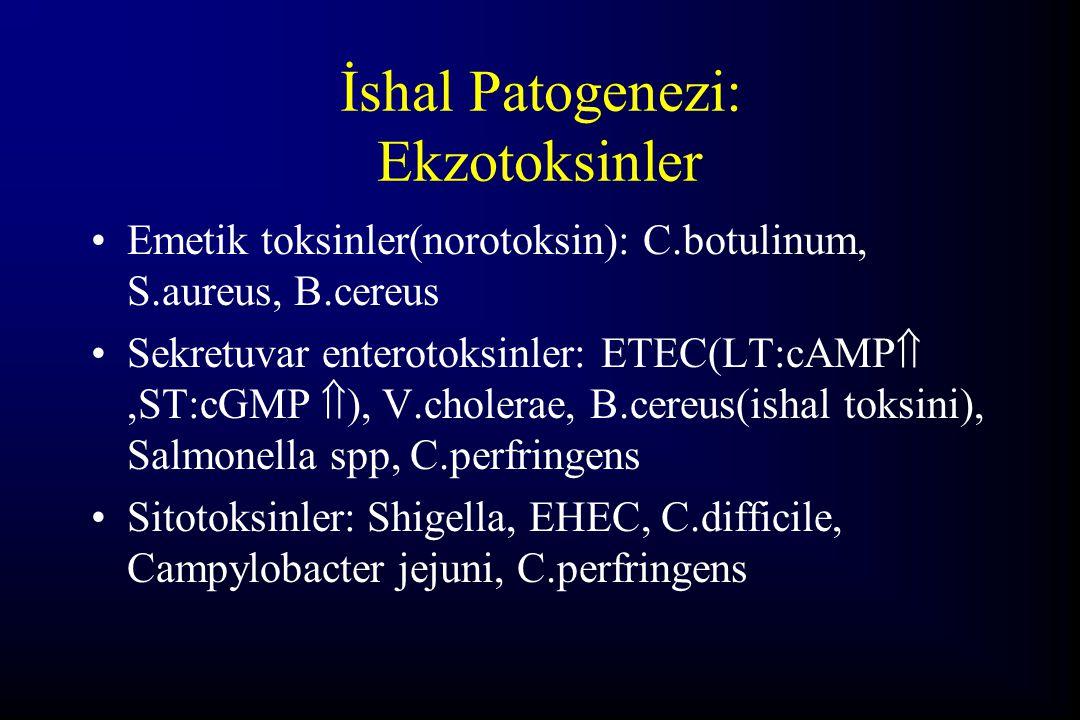 İshal Patogenezi: Ekzotoksinler Emetik toksinler(norotoksin): C.botulinum, S.aureus, B.cereus Sekretuvar enterotoksinler: ETEC(LT:cAMP ,ST:cGMP  ),