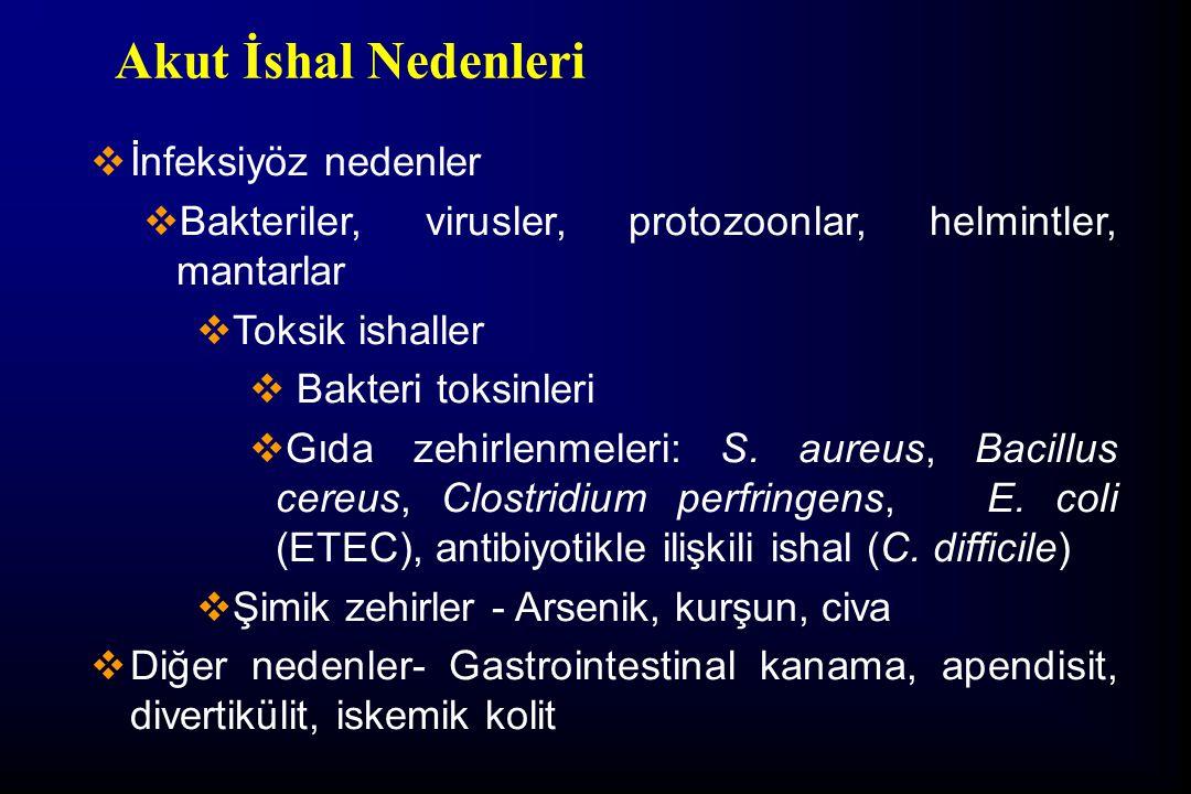 Dışkı Mikroskopisi  Yaş preparat-TS (E.