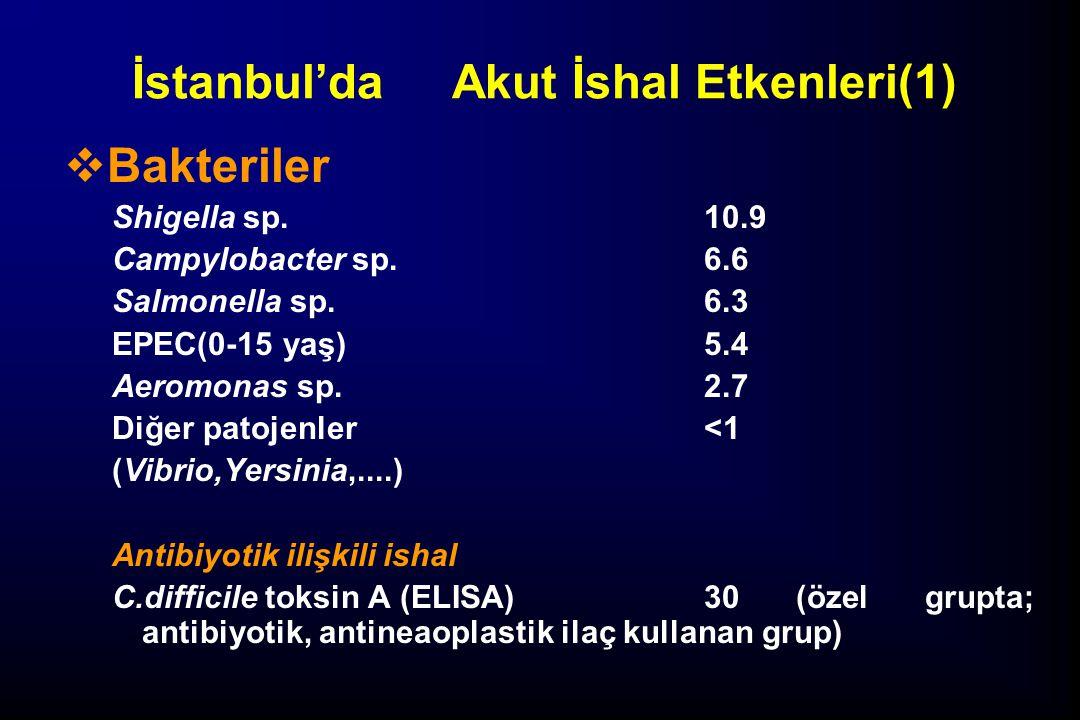İstanbul'daAkut İshal Etkenleri(1)  Bakteriler Shigella sp. 10.9 Campylobacter sp. 6.6 Salmonella sp. 6.3 EPEC(0-15 yaş) 5.4 Aeromonas sp. 2.7 Diğer