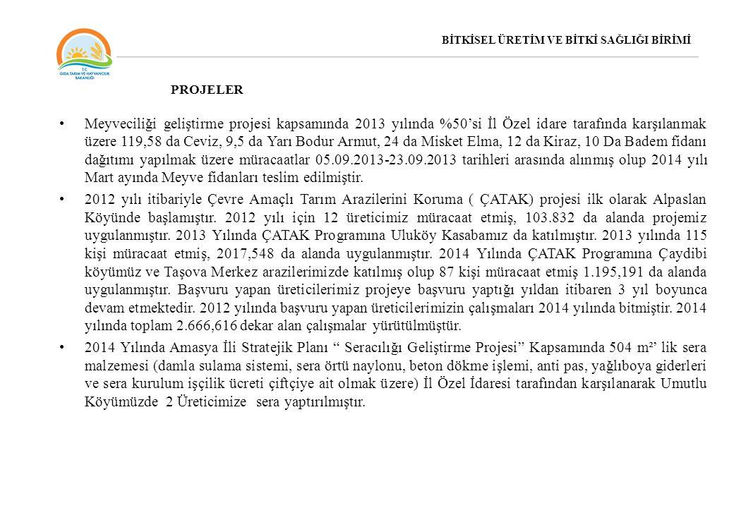 Meyveciliği geliştirme projesi kapsamında 2013 yılında %50'si İl Özel idare tarafında karşılanmak üzere 119,58 da Ceviz, 9,5 da Yarı Bodur Armut, 24 d