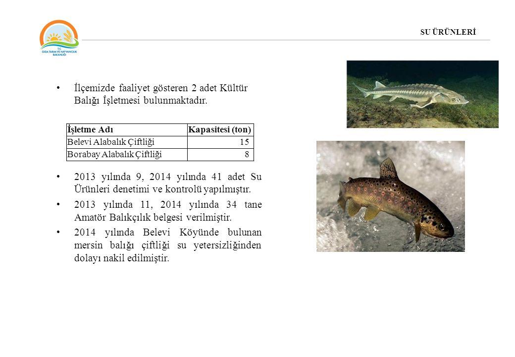 İlçemizde faaliyet gösteren 2 adet Kültür Balığı İşletmesi bulunmaktadır. 2013 yılında 9, 2014 yılında 41 adet Su Ürünleri denetimi ve kontrolü yapılm