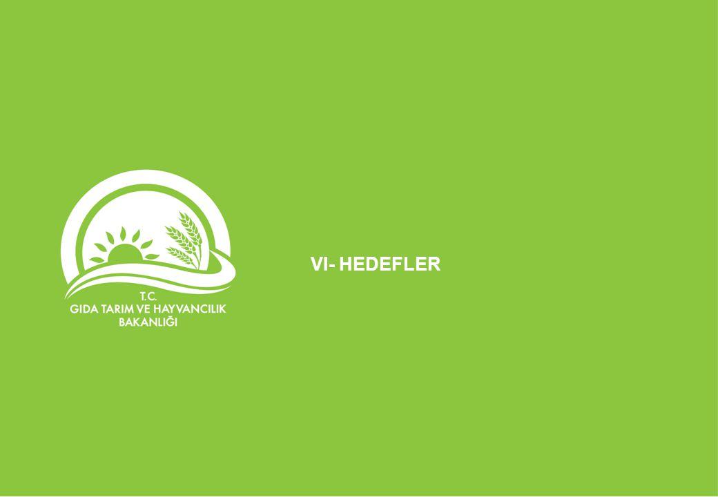 VI- HEDEFLER