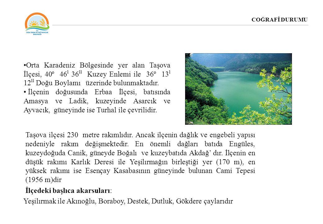 COĞRAFİ DURUMU Orta Karadeniz Bölgesinde yer alan Taşova İlçesi, 40º 46 ˡ 36 ˡˡ Kuzey Enlemi ile 36º 13 ˡ 12 ˡˡ Doğu Boylamı üzerinde bulunmaktadır. İ