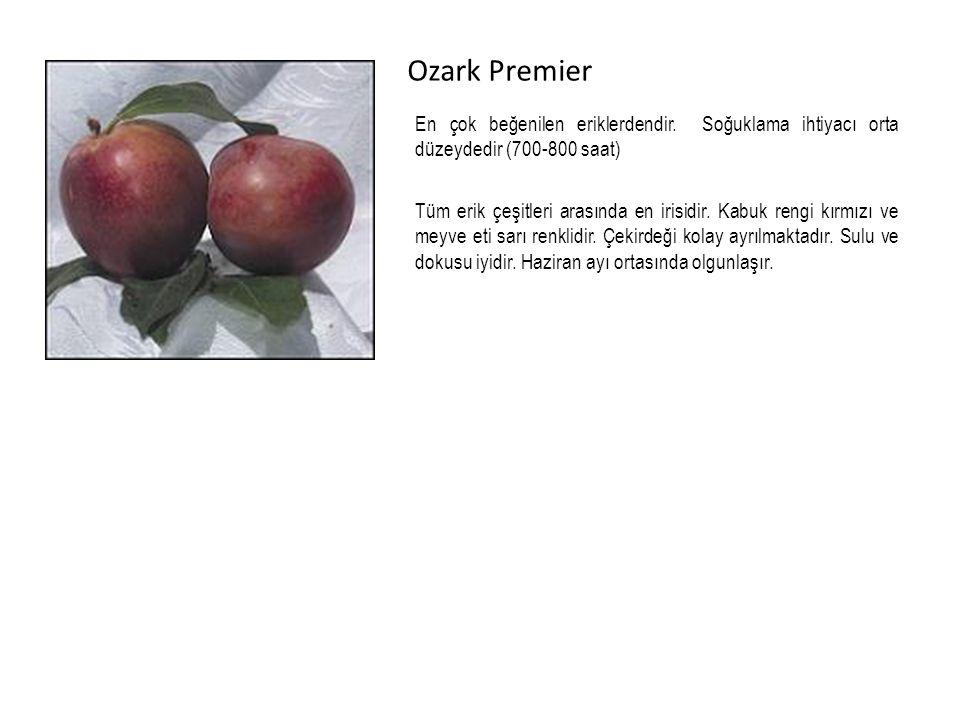 Ozark Premier En çok beğenilen eriklerdendir.
