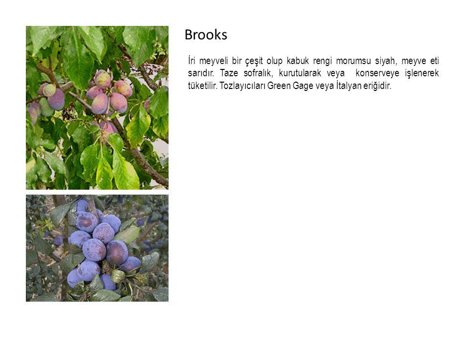 Brooks İri meyveli bir çeşit olup kabuk rengi morumsu siyah, meyve eti sarıdır.
