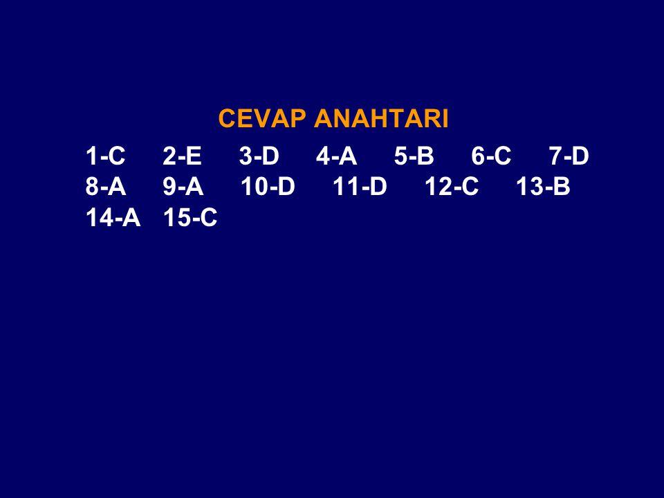 CEVAP ANAHTARI 1-C 2-E 3-D 4-A 5-B 6-C 7-D 8-A 9-A 10-D 11-D 12-C 13-B 14-A 15-C