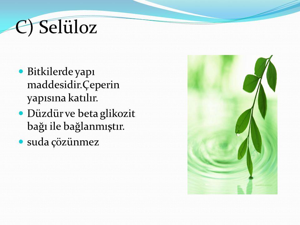 C) Selüloz Bitkilerde yapı maddesidir.Çeperin yapısına katılır. Düzdür ve beta glikozit bağı ile bağlanmıştır. suda çözünmez