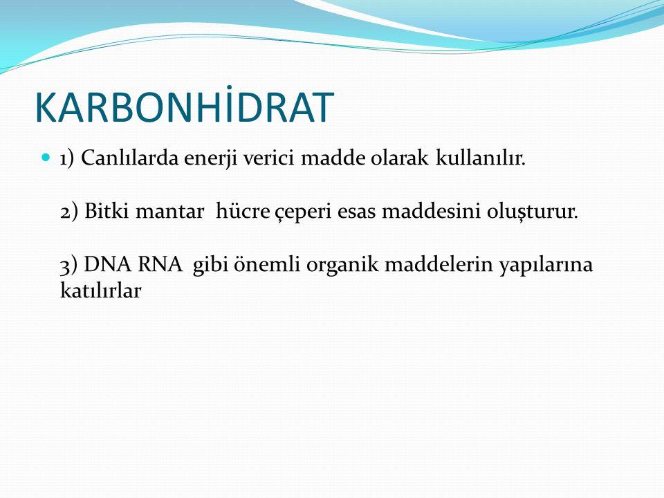 KARBONHİDRAT 1) Canlılarda enerji verici madde olarak kullanılır. 2) Bitki mantar hücre çeperi esas maddesini oluşturur. 3) DNA RNA gibi önemli organi