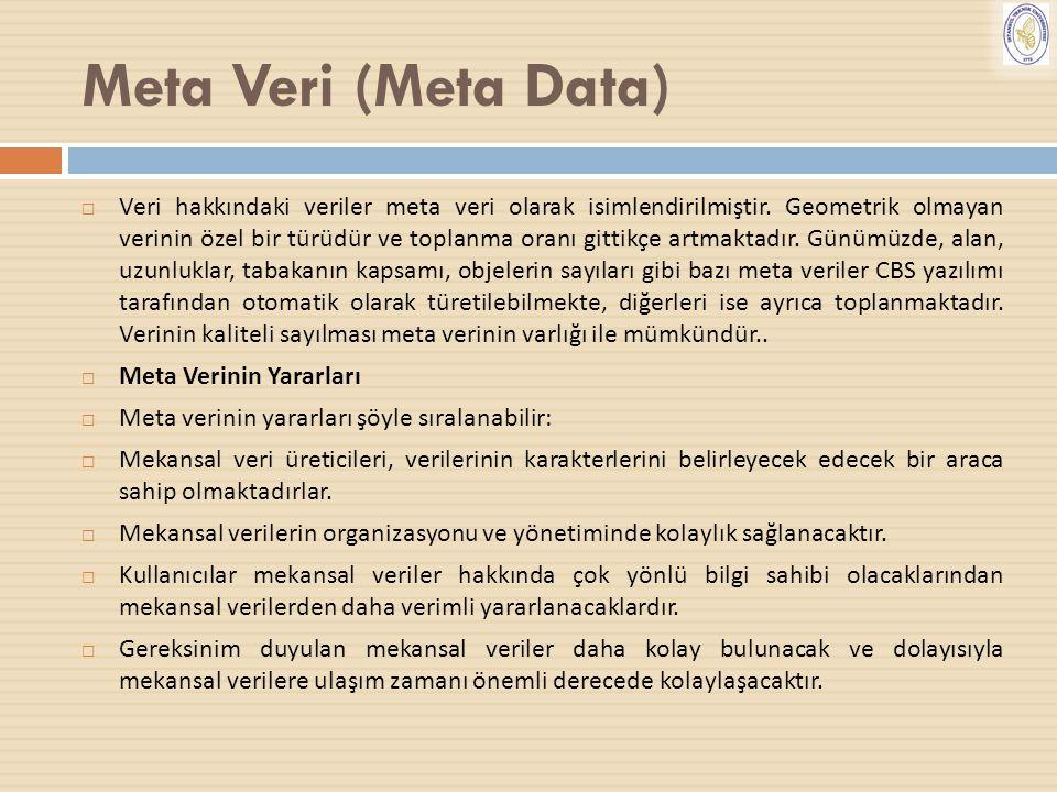 Meta Veri (Meta Data)  Veri hakkındaki veriler meta veri olarak isimlendirilmiştir. Geometrik olmayan verinin özel bir türüdür ve toplanma oranı gitt