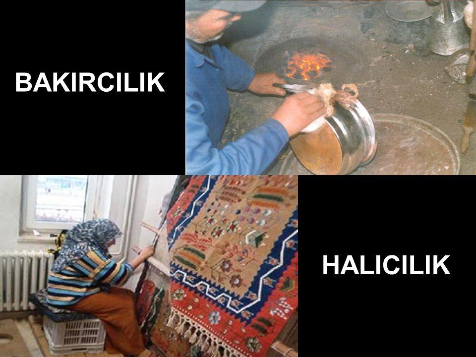 HALICILIK BAKIRCILIK