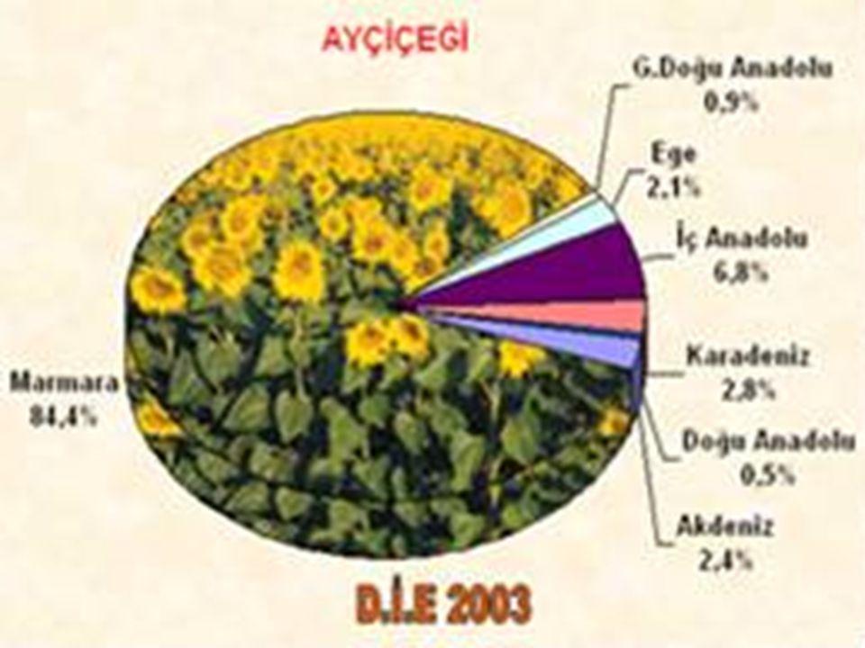 Ülkemizde Doğu Karadeniz Bölgesi'nde, özellikle de Rize'de yetiştirilmektir. ÇAY