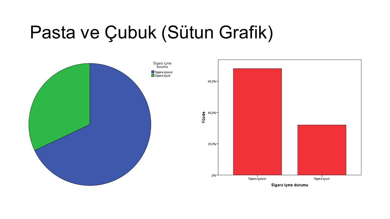 Pasta ve Çubuk (Sütun Grafik)