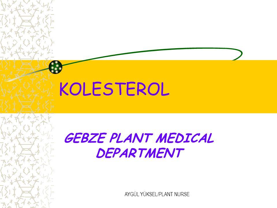 AYGÜL YÜKSEL/PLANT NURSE KOLESTEROL GEBZE PLANT MEDICAL DEPARTMENT